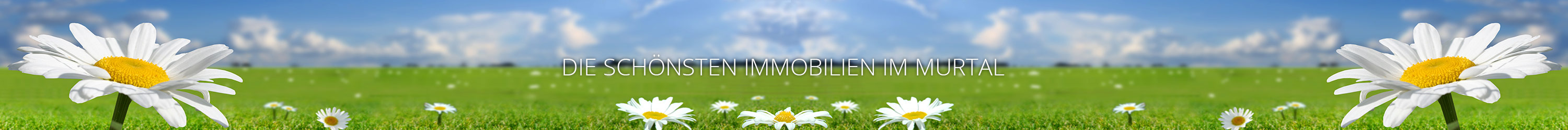 Immobilien | Ihre Immobilie in guter Hand !